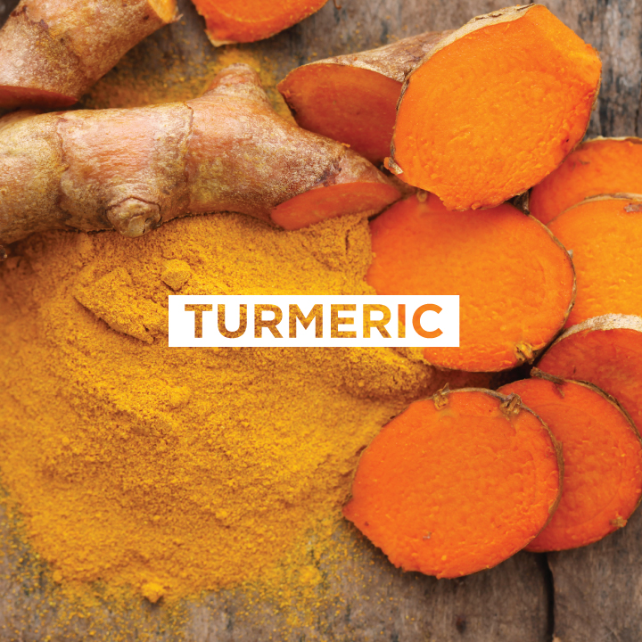 JoMo---Ingredient---Turmeric.jpg