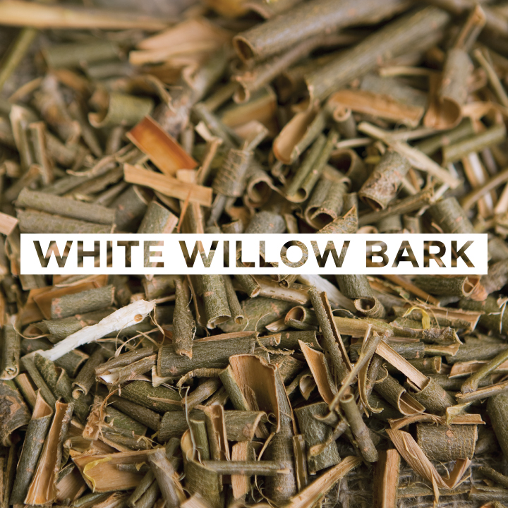 JoMo---Ingredient---White-Willow-Bark.jpg