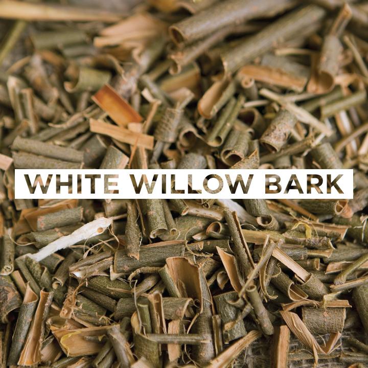 JoMo---Ingredient---White-Willow-Bark.jpg