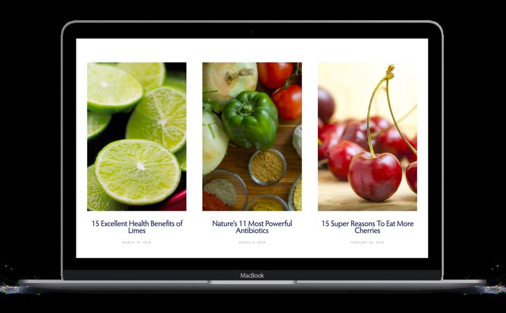 Portfolio---JoMo---Website---Blog.png