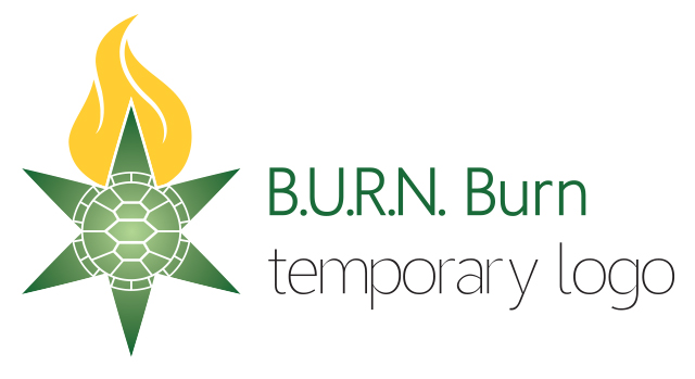BURN_Burn_2018_temporary logo_v2.jpg