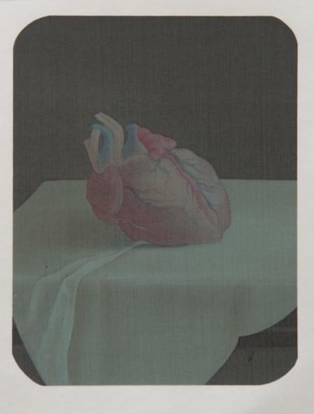 Hao Liang 郝量, Dissection Series-5 移用解剖学-5, Ink and color on silk 绢本重彩, 17.5 x 14 cm