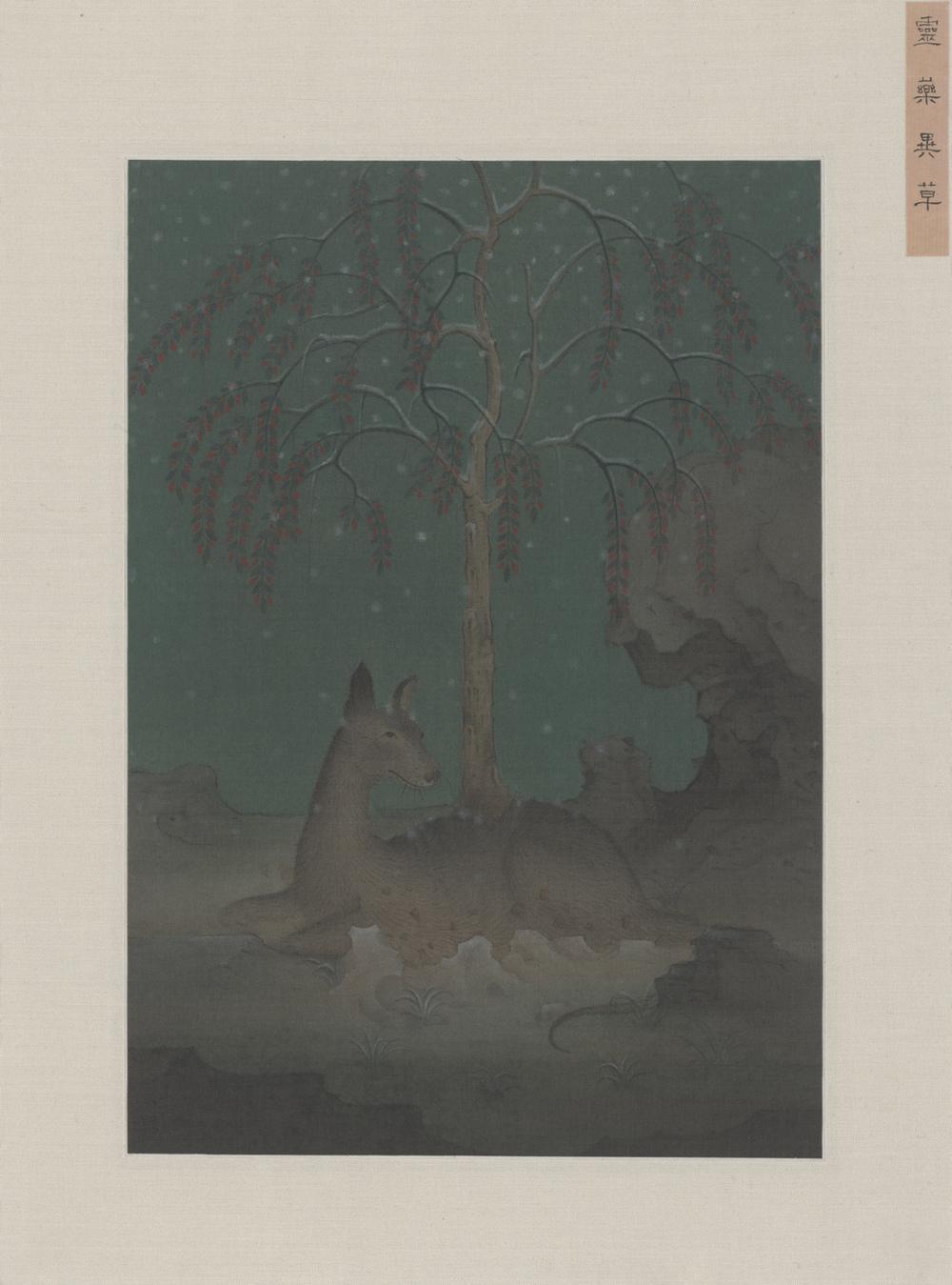 Hao Liang 郝量, Magical Herbs 灵药异草, 2013, Ink and color on silk 绢本重彩, 27.5 x 19.5 cm