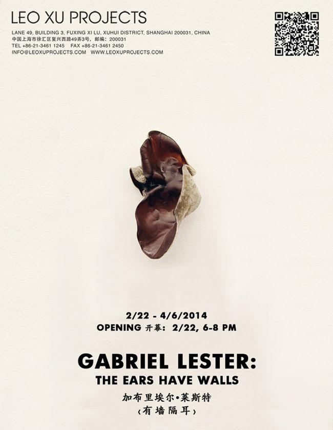 Leo Xu Project_Gabriel Lester.jpg