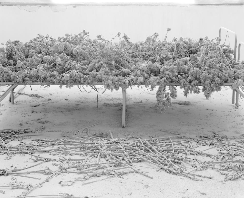 Ji Zhou 计洲, Dust No.1 尘之一, 2011, Ultra Giclee 艺术微喷, 150 x 180 cm