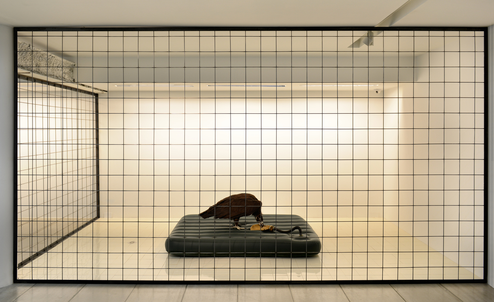 Gao Lei  高磊, F-09151, 2012, Mixed media installation 综合材料装置, 55 x 190 x 130 cm