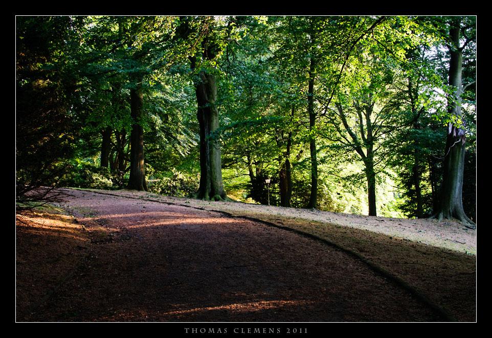 bochum_stadtpark_20110527_tcl_0014_small_fc