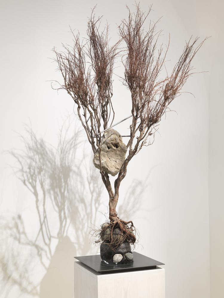 Rebecca Horn,  Metamorphosis Ovidio , rami, teschio di ghisa, acciaio, pietre, luce, piedistallo di legno (Branches, cast-iron skull, steel, stones, light, wooden-pedest. cm 217x90x80, 2012