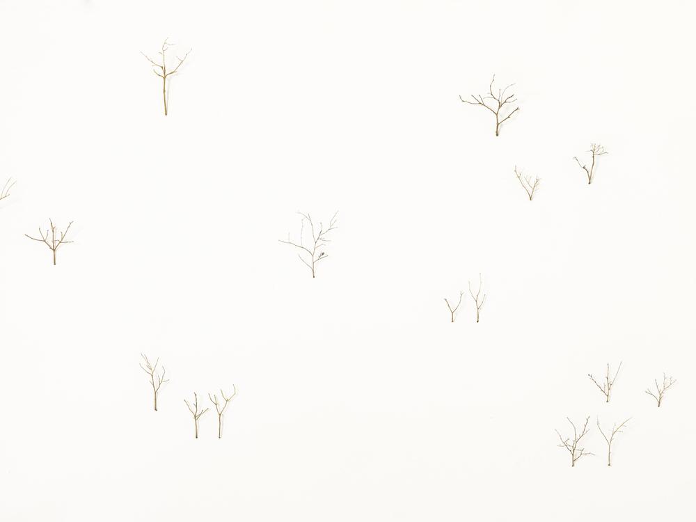 paesaggio , 2012in fusione di ottone50 pezzimisure variabili/50 branches casted in brass