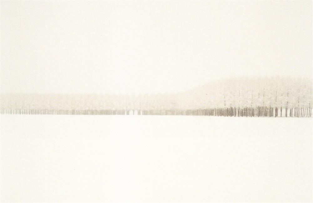Filare di pioppi, Campagna Modenese, 1985, da  Il profilo delle nuvole , ed. 6/7