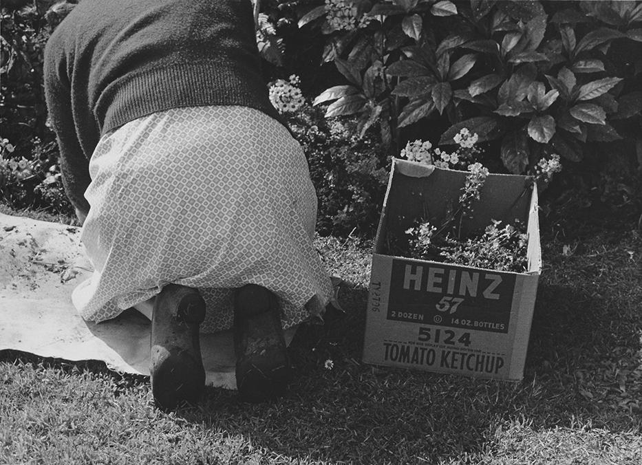 Dorothea Lange,  Spring in Berkeley , 1952, vintage print, cm 24x16, framed cm 45,5x45,5