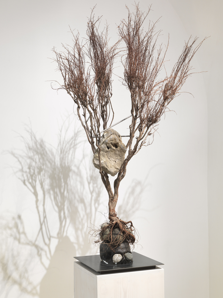 Metamorphosis Ovidio,  2012, branches, cast-iron skull, steel, stones, light, wooden-pedestal, cm 217x90x80