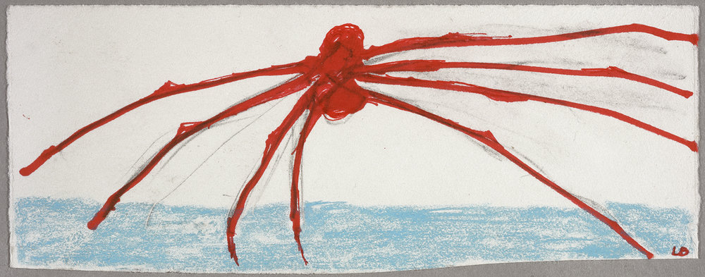 Spider , 2003, recto, ink, colored pencil and pencil on paper, cm 8,9 x  22,2 Ph Christopher Burke © The Easton Foundation/SIAE