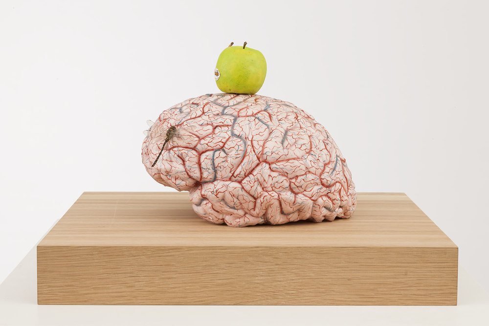 Brain of an atheist , 2014, silicon, pigment, wax, wood, metal, insects, 50x45x31,5 cm Ph. Pat Verbruggen © Angelos bvba