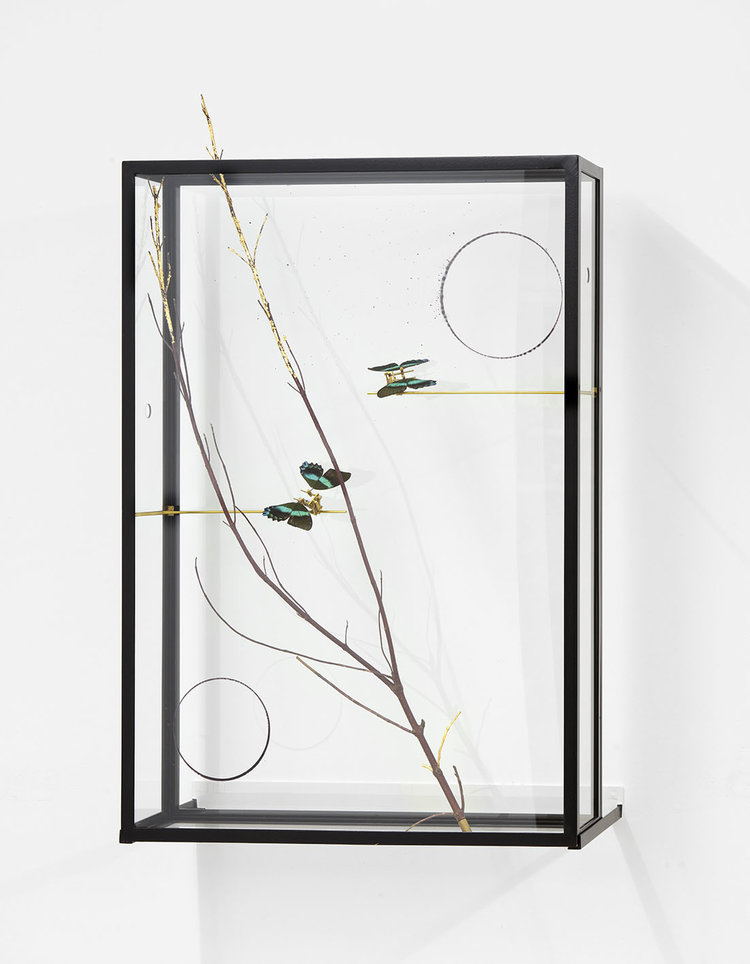 Passing the Moon of Evidence I , 2017, steel, glass, butterflies, branch, gold leaf, glass surface 2 circles, brass, motor, electronic device, 111x70x19 cm