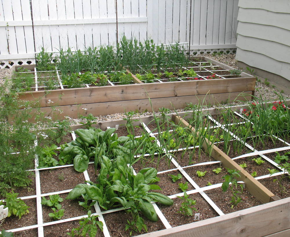 Small garden ideas square foot veggie gardening eco for Square foot garden designs