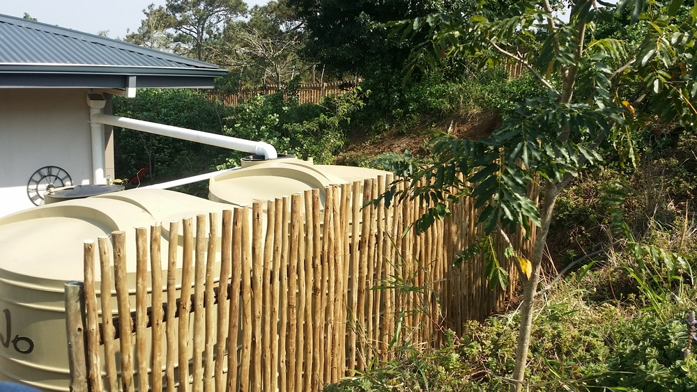 garden screens.jpg