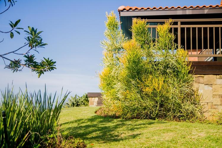 Professional Garden Maintenance Plan Eco Balance Landscaping