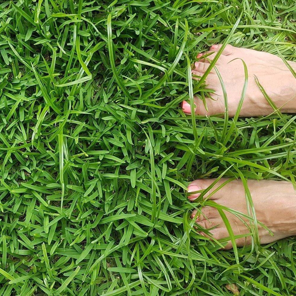 Megans feet.jpg