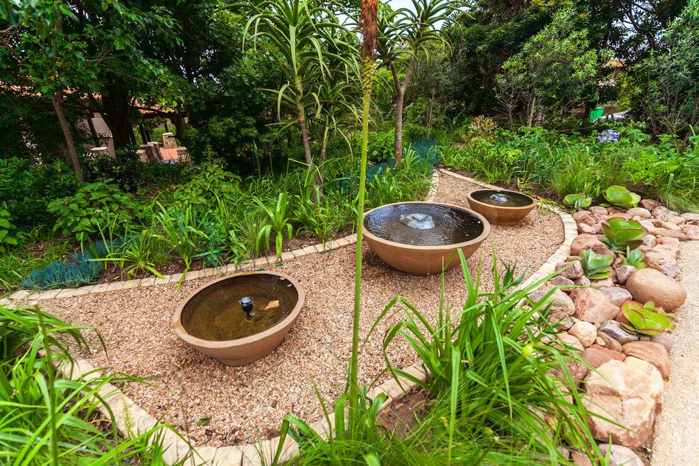 Succulent Rock Garden 3.jpg
