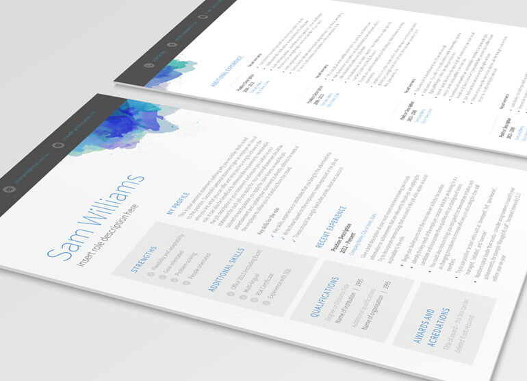 picasso blue template pure resume