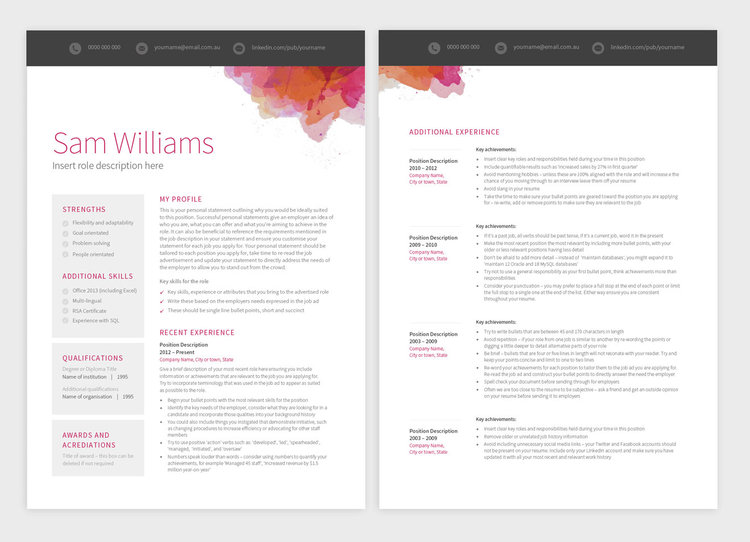 Picasso 2up  Resume Retail Manager