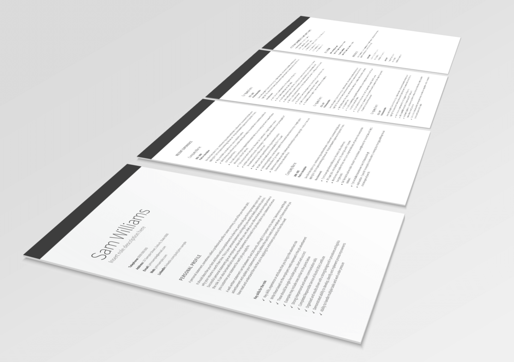 Classic-Executive-Resume-3D-Large.png