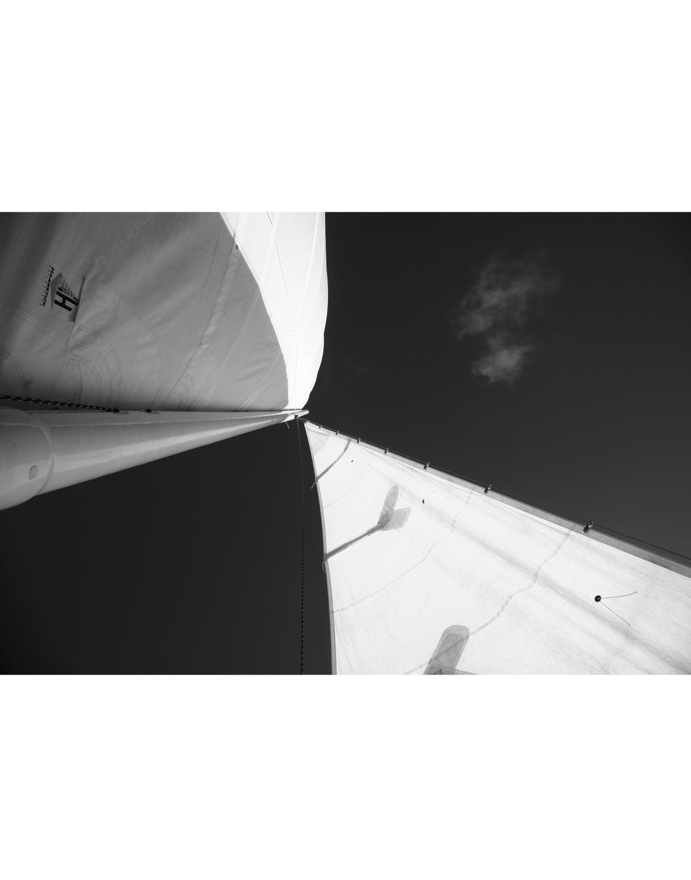 Sails Portfolio.jpg