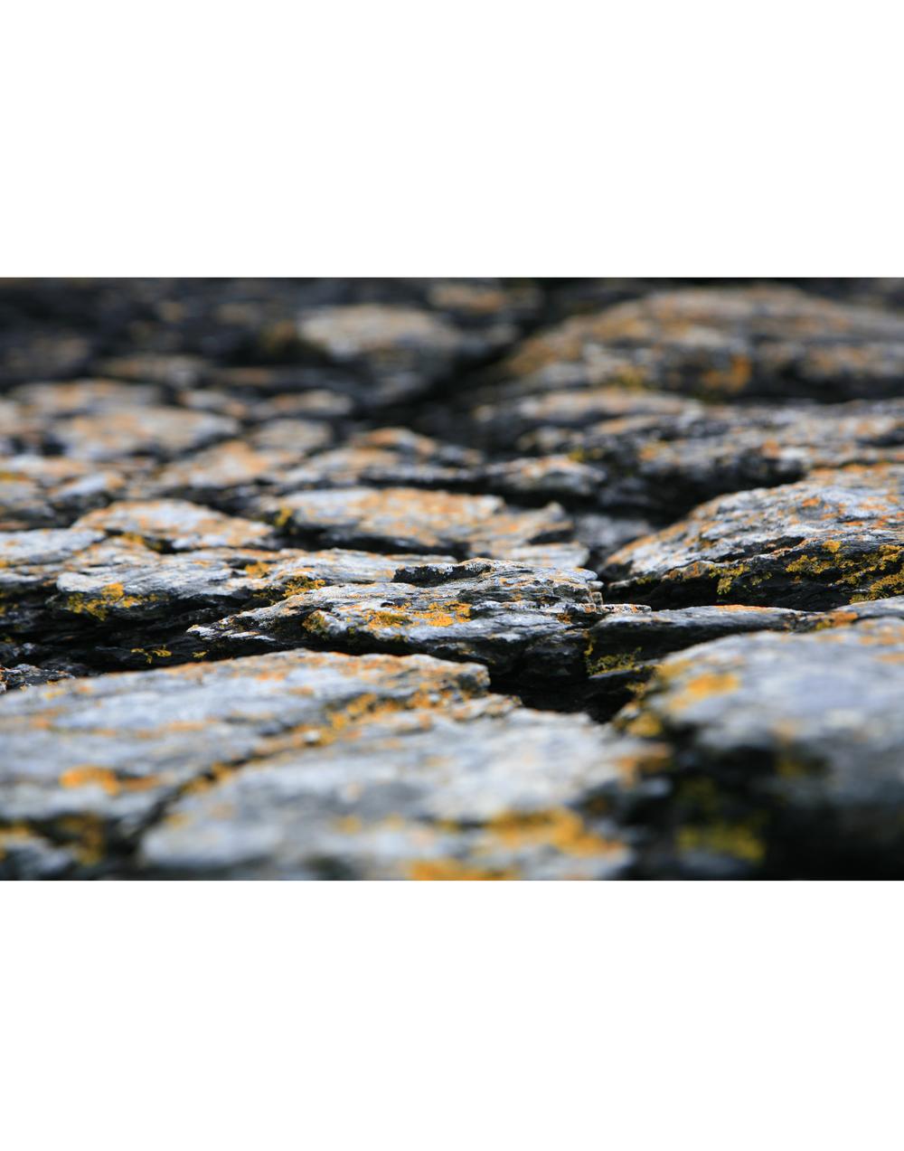 Yellow Stones.jpg