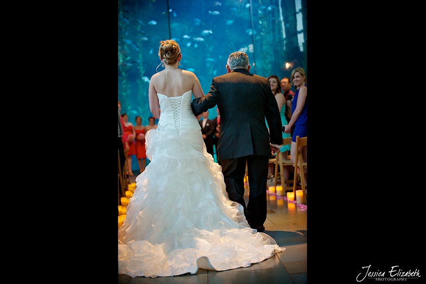 Aquarium of the Pacific Wedding Jessica Elizabeth Photography Long Beach-20.jpg