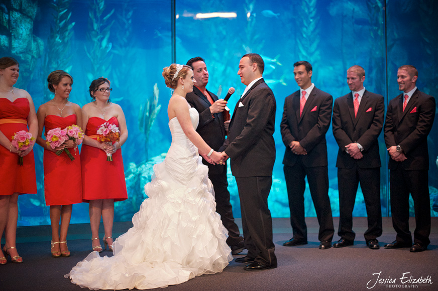 Aquarium of the Pacific Wedding Jessica Elizabeth Photography Long Beach-23.jpg