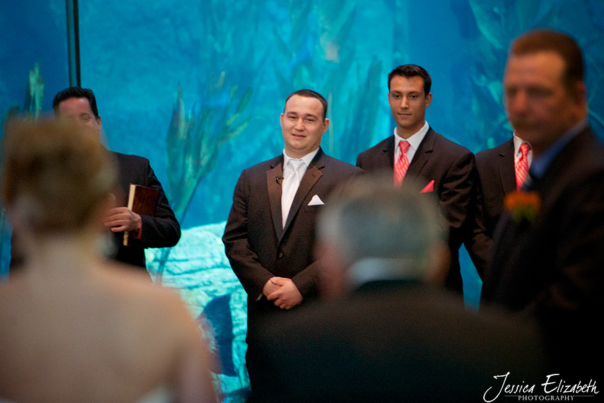 Aquarium of the Pacific Wedding Jessica Elizabeth Photography Long Beach-25.jpg