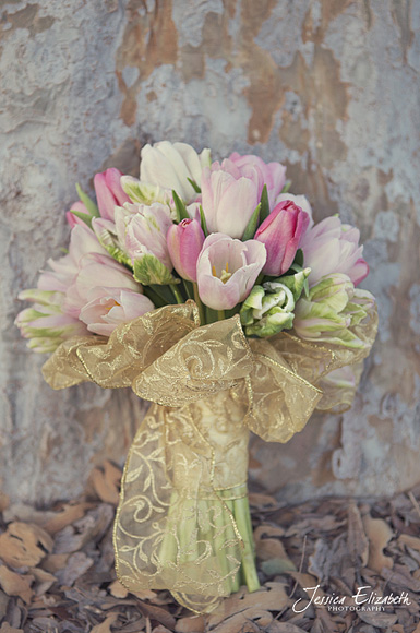 Jessica_Elizabeth_Photography_Pixie's_Petals_ Tulips_ Faded_Tree.jpg