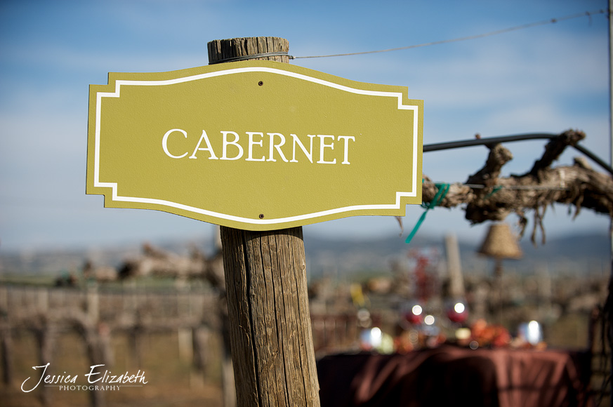 Ponte_Winery_Wedding_Photography_Cabernet.jpg