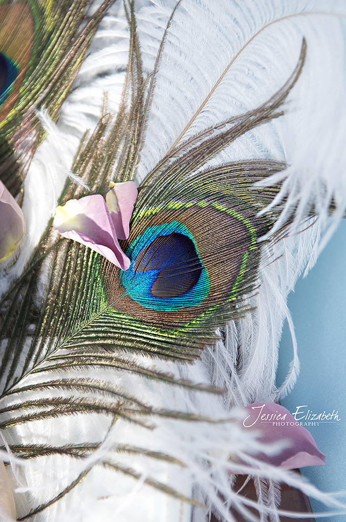 Ponte_Winery_Wedding_Photography_Peacock_Feather_szBl.jpg