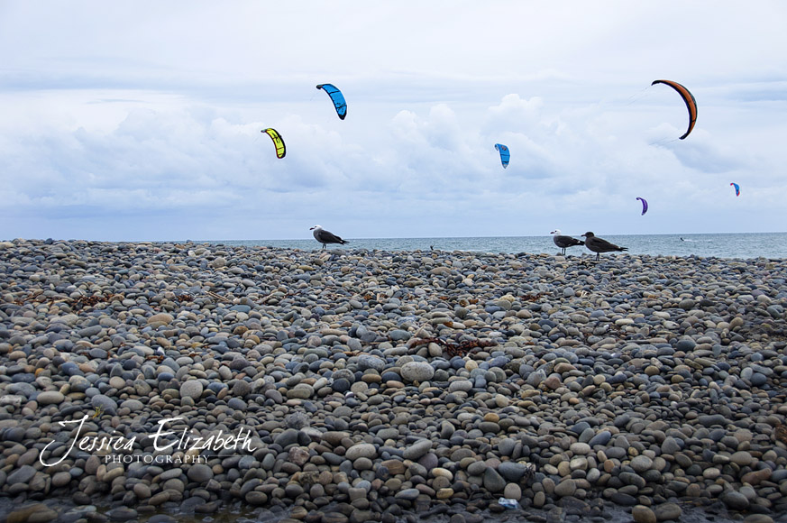 Solana_Beach_Kite_Surfing_and_Birds.jpg