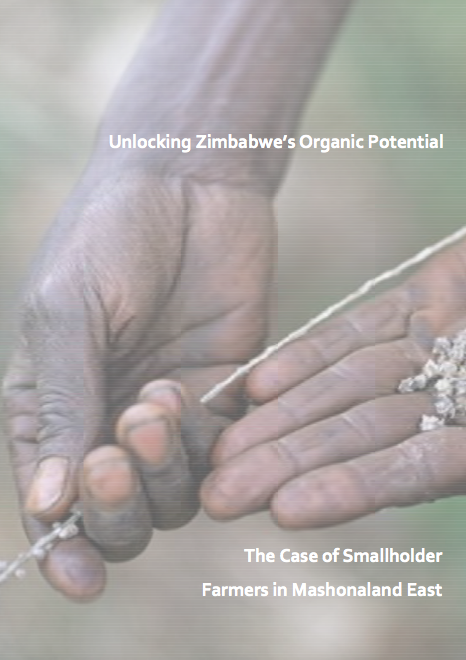 Exploring the relative opportunities presented by organic certification and market development for Zimbabwe's smallholder farmer sector.