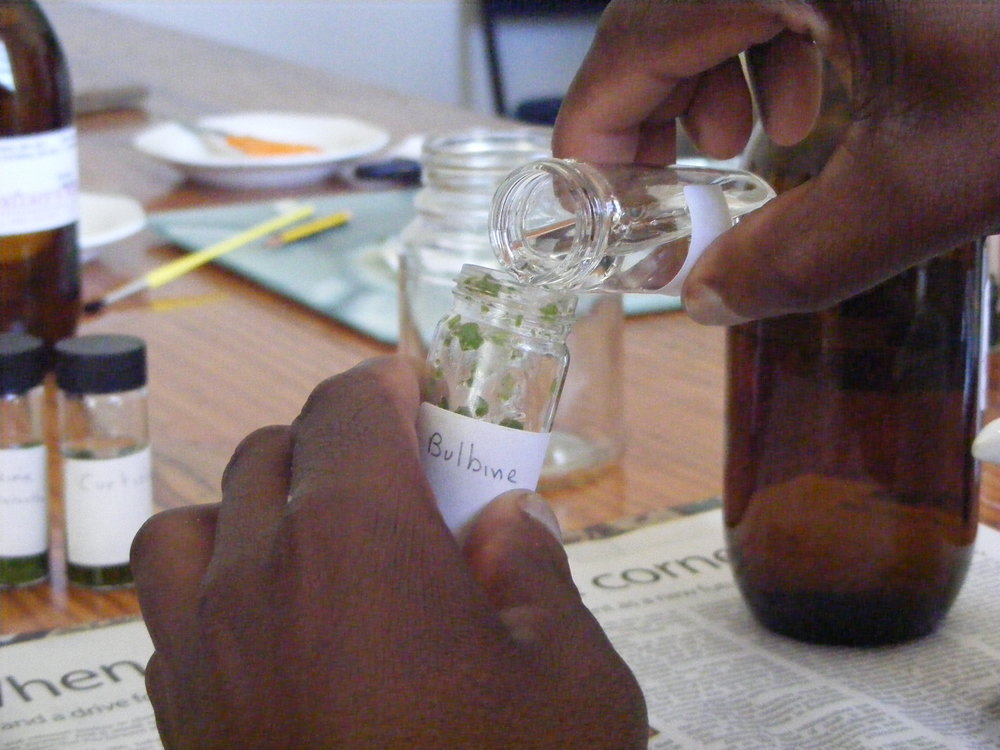 Preparing samples for chemical analysis - medicinal plant conservation (funded by Defra's Darwin Initiative). Umthathi Africulture Project, Eastern Cape - South Africa