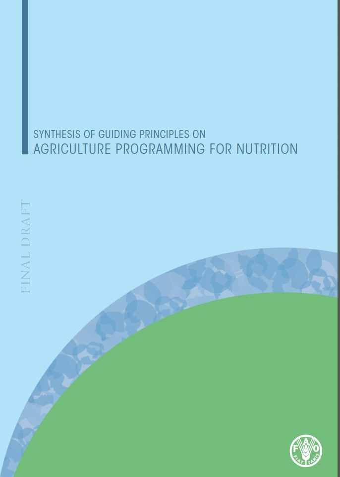 Guidance to practitioners on synethesising agriculture and nutrition programmes. FAO 2013