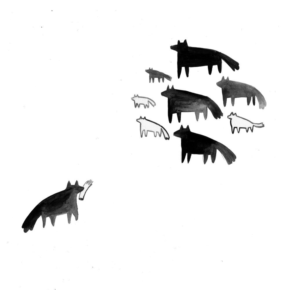 armcoyotes.jpg