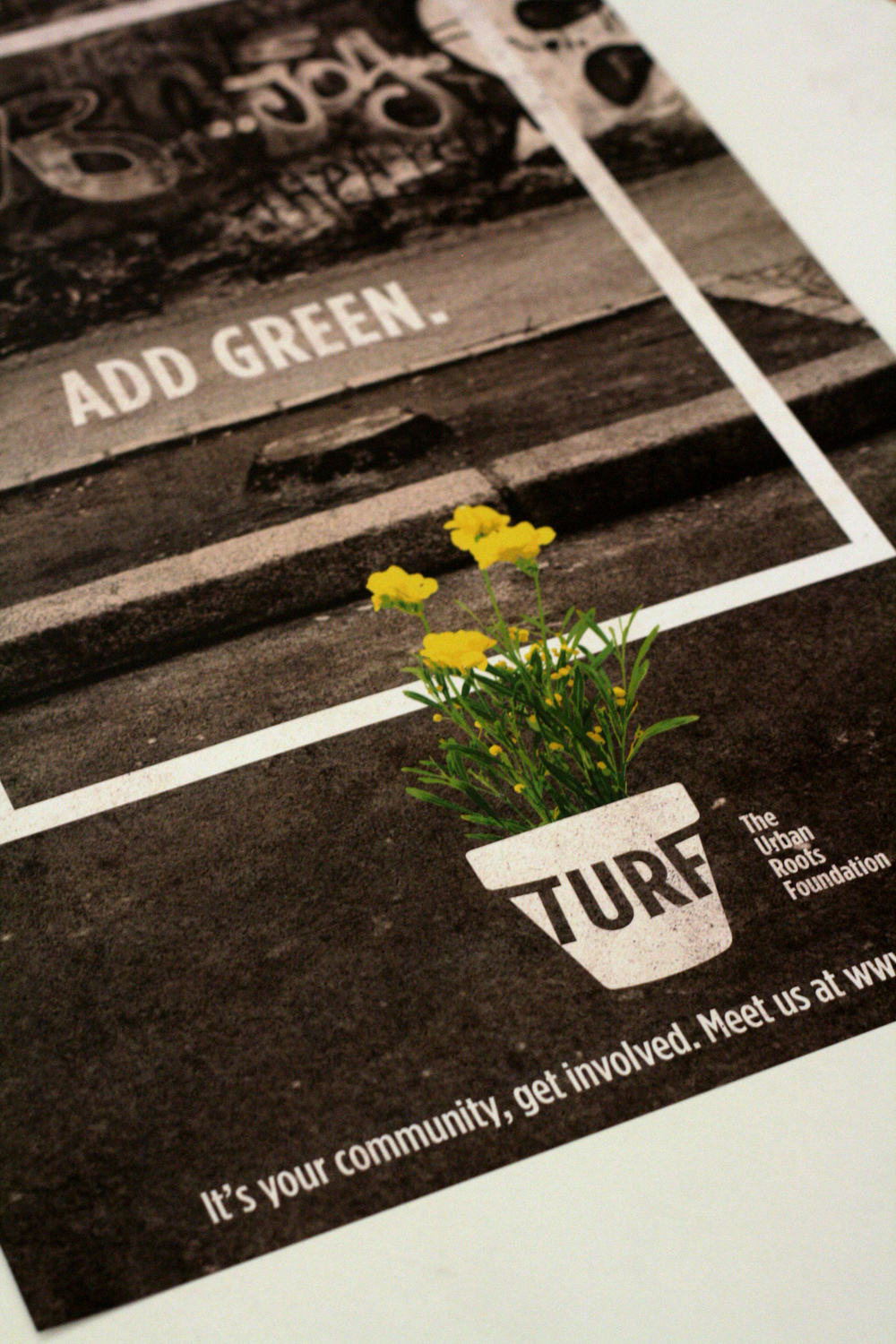 TURF poster