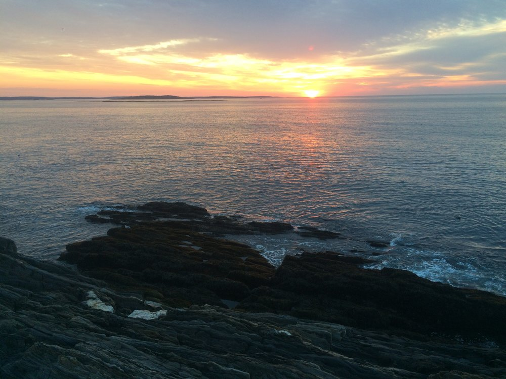 daybreak at reef where we collect the spores that will become the mature kelp plants.jpg