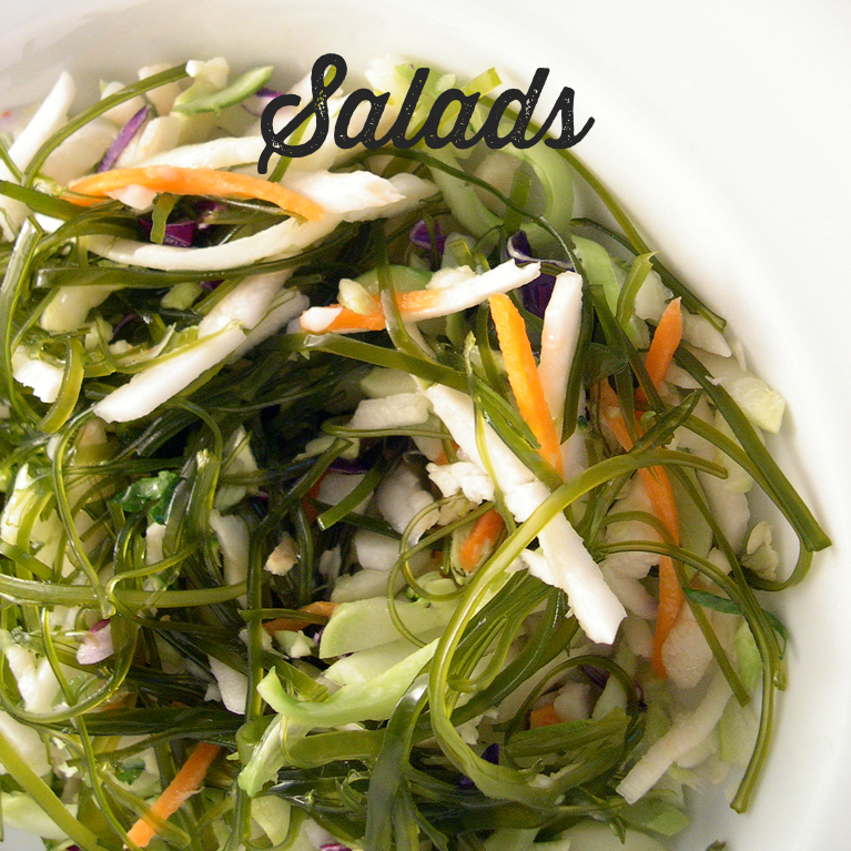 Salads Web Icon.png