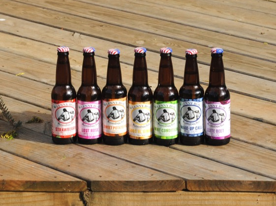 Different flavor varieties of Lenny Boy Kombucha.