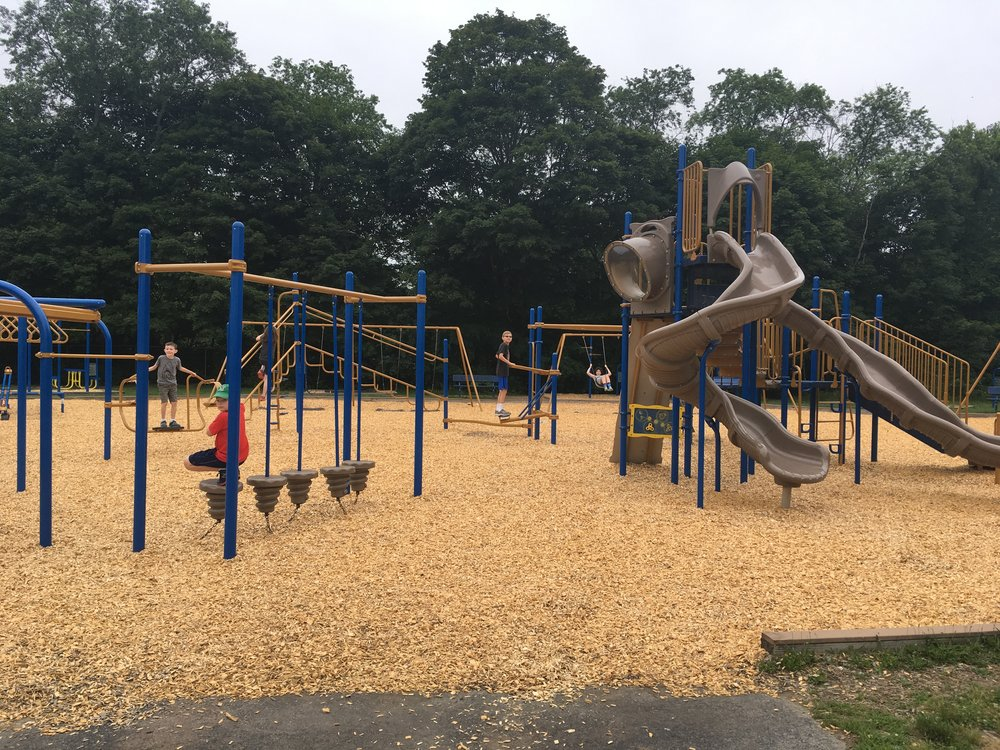 Reviewers were impressed with a layer of fresh turf under all of the playground structures.