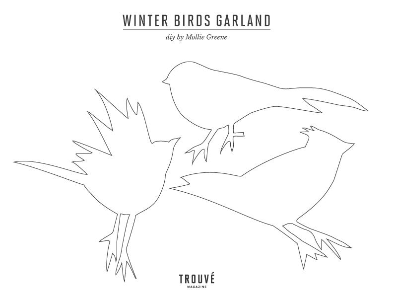 BirdDIY.jpg