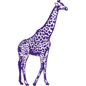 Purple Giraffe Designs Coupons & Promo codes