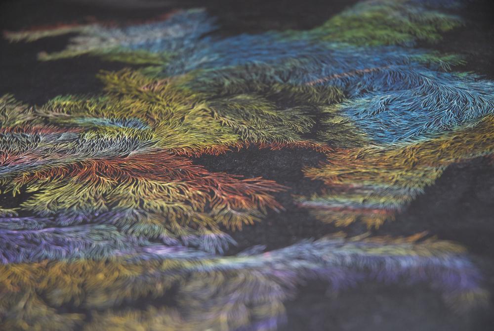 Detail_Ago su pastello ad olio su carta_594x840mm.jpg