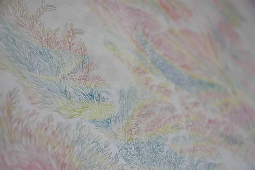 detail (White) Ago su pastello ad olio su carta_594x840mm.jpg