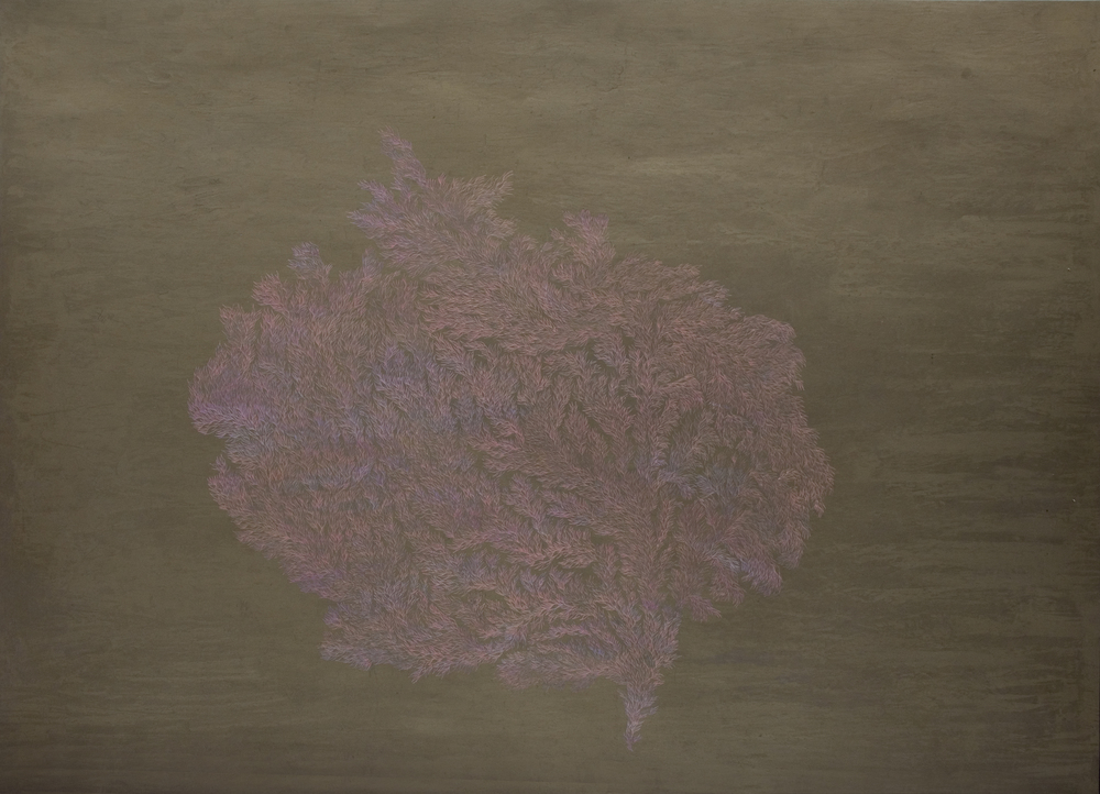 Pastels on Paper ,  Oil on Needle , 2015. (59.4 x 84 cm)